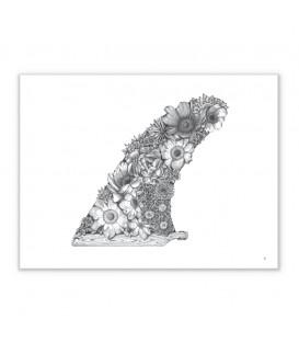 illustration fin & flowers